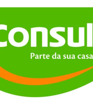 Assistência Técnica Consul