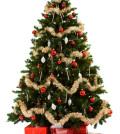 árvores de natal decorada