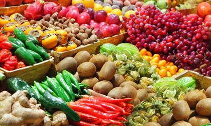 alimentos orgânicos